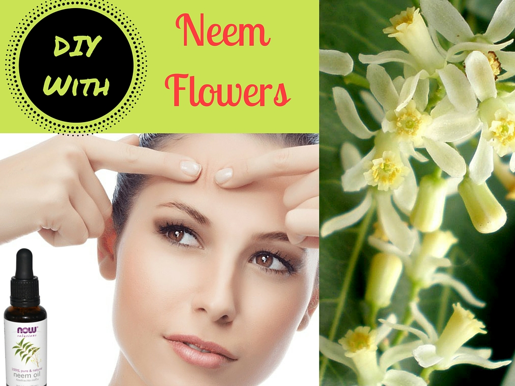 my natural beauty book  neem is one of the precious medicinal tree everything from this tree is edible it is native to myanmar sri lanka and