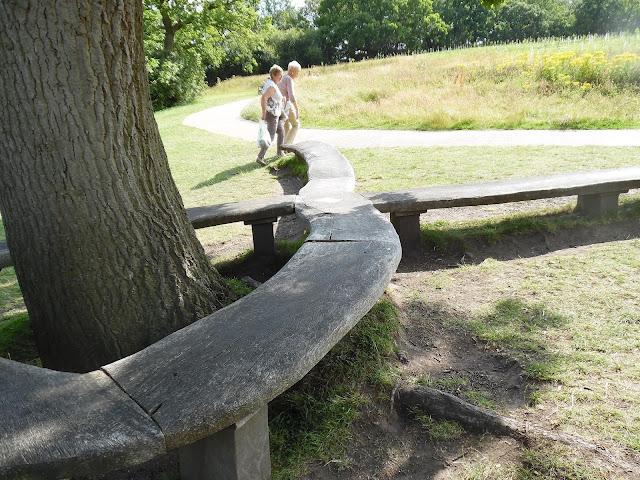 drewniana ławka przy drzewie