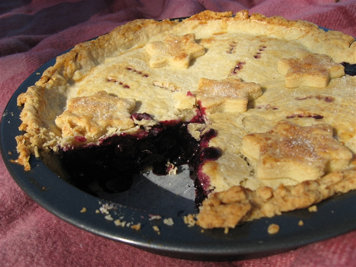 Morsels and Musings blueberry pie the 4th of july