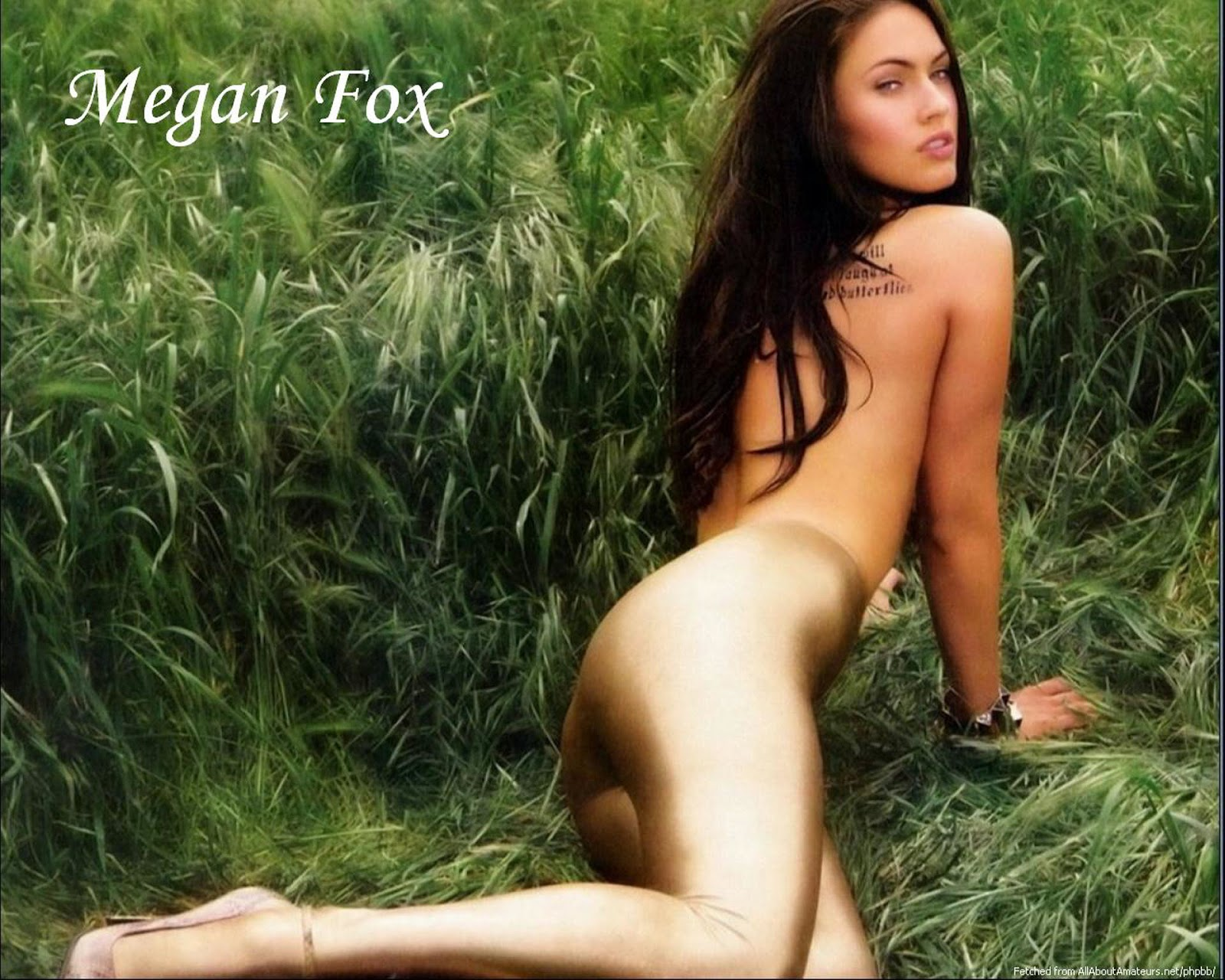 http://4.bp.blogspot.com/-ucMlde4FyeI/UNV_ueC_q5I/AAAAAAAApmM/Sq2VBH9eVc4/s1600/Megan+Fox+-+Hot+HD+Wallpapers+0003.jpg
