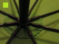"""Mitte: VON LILIENFELD grüner Regenschirm mit Tiermotiv """"Schattenfrosch"""""""