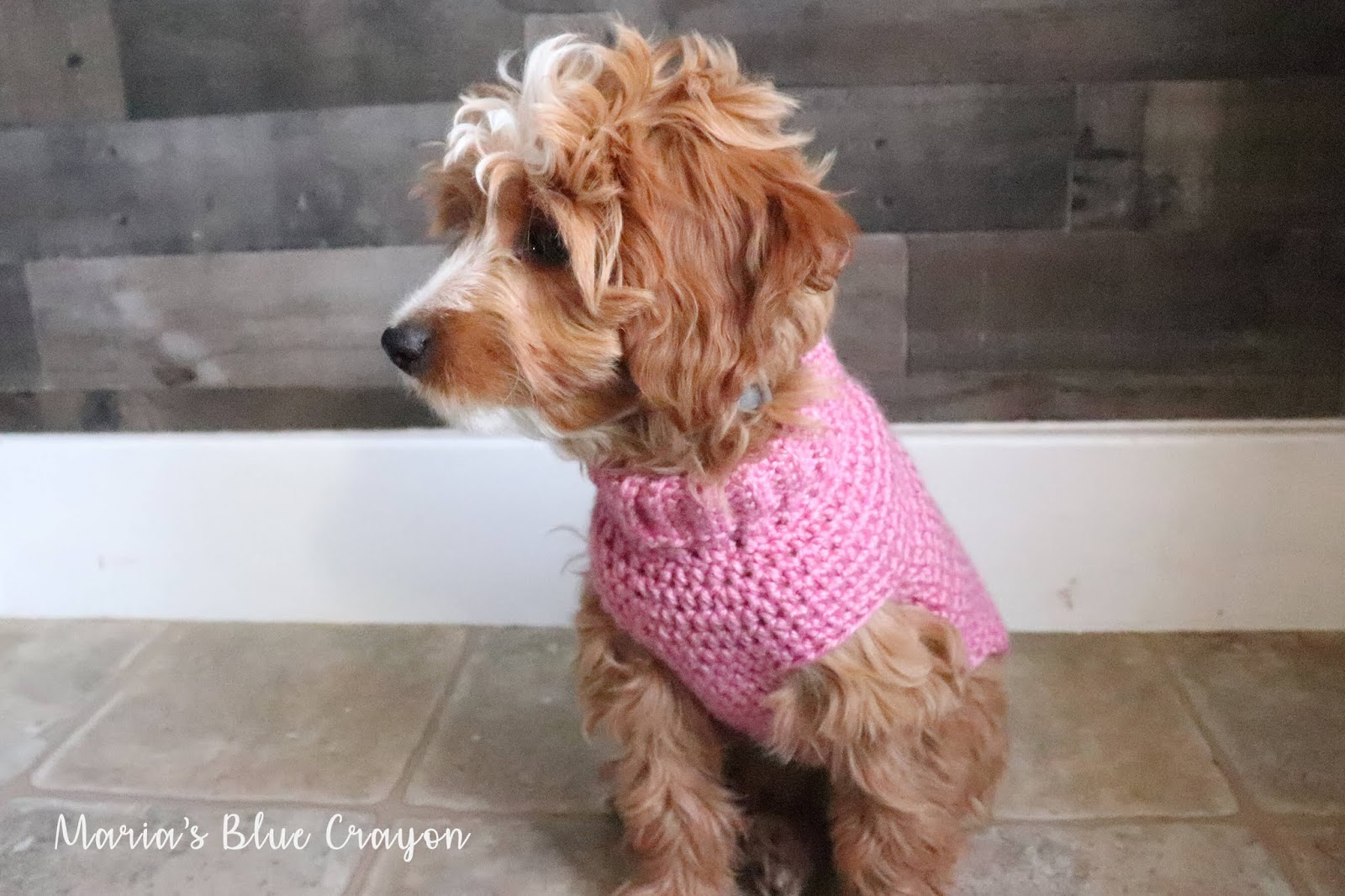 Crochet Basic Dog Sweater Free Step By Step Tutorial