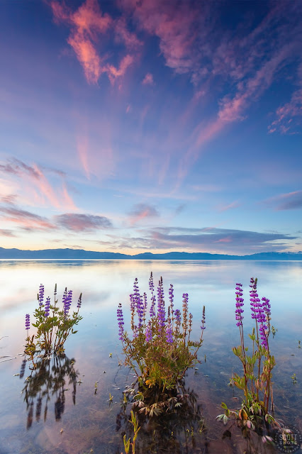 My Top 10 Tahoe Area Photos of 2016