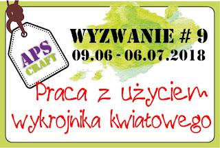 https://apscraft.blogspot.com/2018/06/wyzanie-9.html