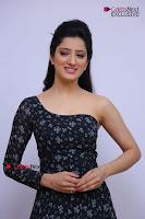 Telugu Actress Richa Panai Stills in One Shoulder Floral Long Dress at Rakshaka Bhatudu Movie Interview  0062.JPG