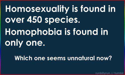 Homosexuality is a sin debate