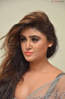 Sony Charishta in Saree and style choli .XYZ Exclusive 29
