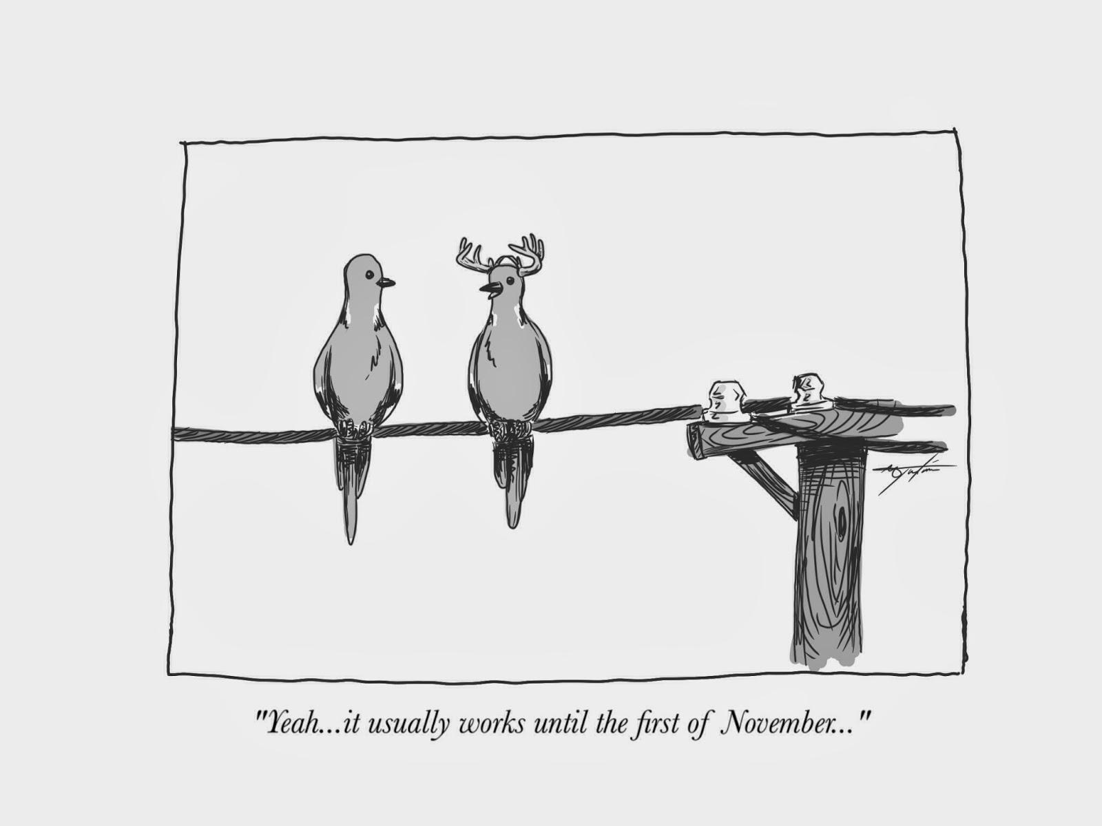 The Broken Compass Journal: Dove Hunting Cartoons