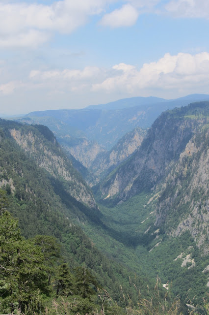 Montenegro, NP Durmitor, droog gevallen canyon