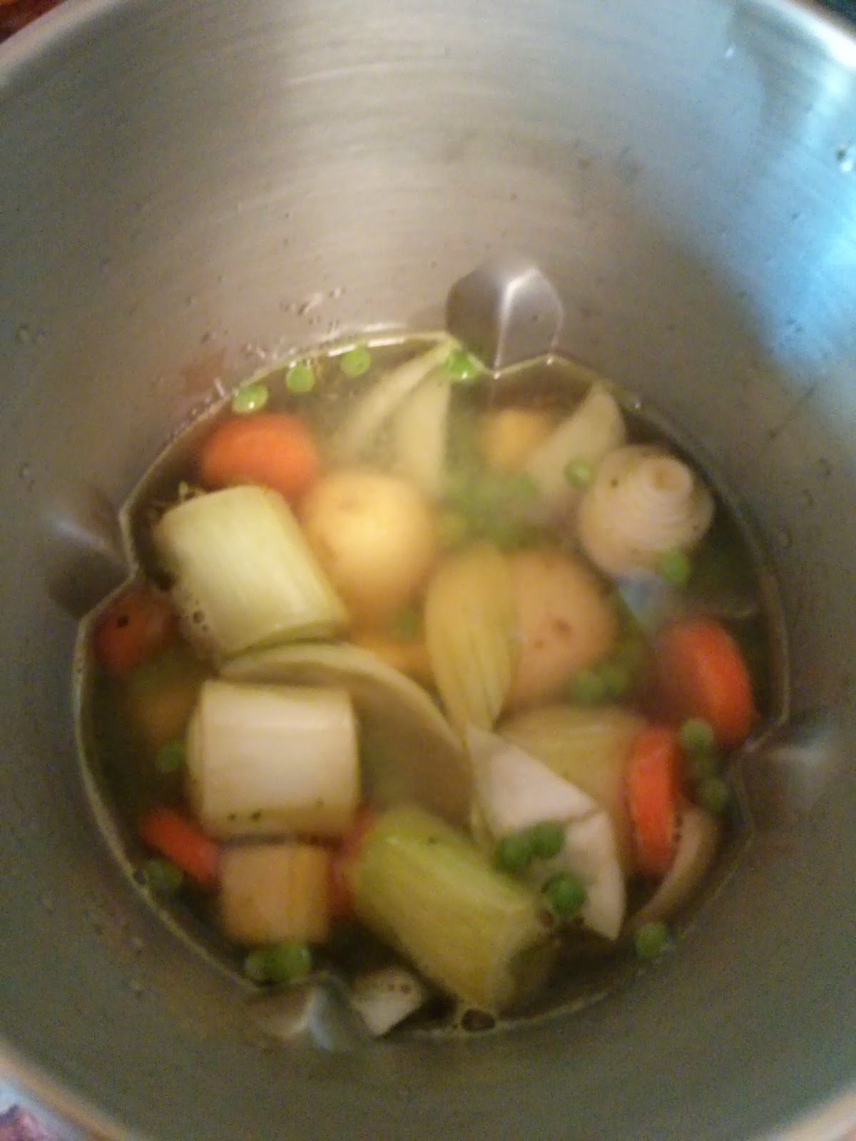 Vegetables in the Morphy Richards Soup Maker