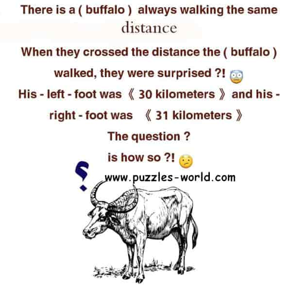 The Walking Buffalo Puzzle