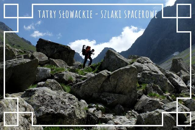 http://www.rudazwyboru.pl/2014/05/propozycje-spacerowych-szlakow-w.html