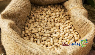 اسعار العلف اليوم فى مصر