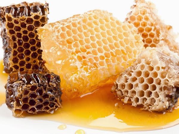 [Review] Natural Honey - Pure Honey Lotion