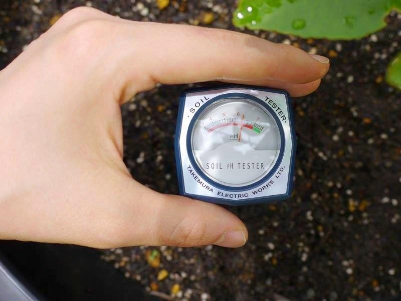 Bútđo pH đất và độ ẩm đất