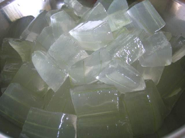 Trozos de gel de aloe preparados para usar.