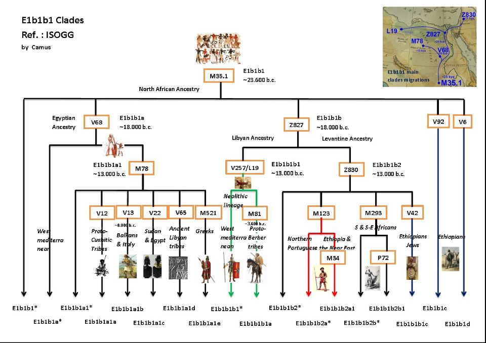 What Is Your yDNA Haplogroup? - Page 21 - AnthroScape
