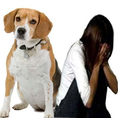 एक पति ने पत्नी से कहा कि कुत्ते से सेक्स करो - Husband told wife to sex with dog