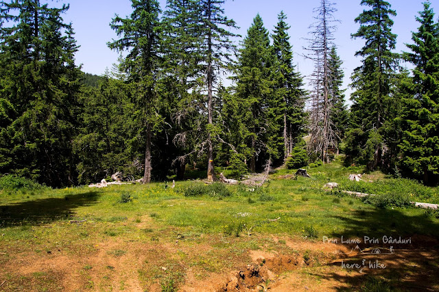 Titov Peak - Macedonia - Wrong road