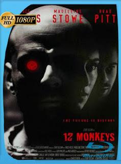 12 monos 1995 HD [1080p] Latino [GoogleDrive] DizonHD