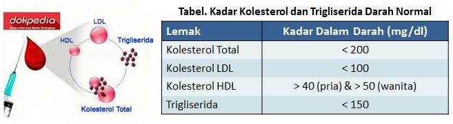 cek & kadar lemak darah normal