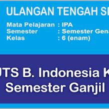 Soal UTS Bahasa Indonesia Kelas 1 Semester 1 (Ganjil) Terbaru Plus Kunci Jawaban