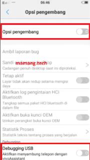 Cara Aktifkan USB Debugging di Vivo Y95