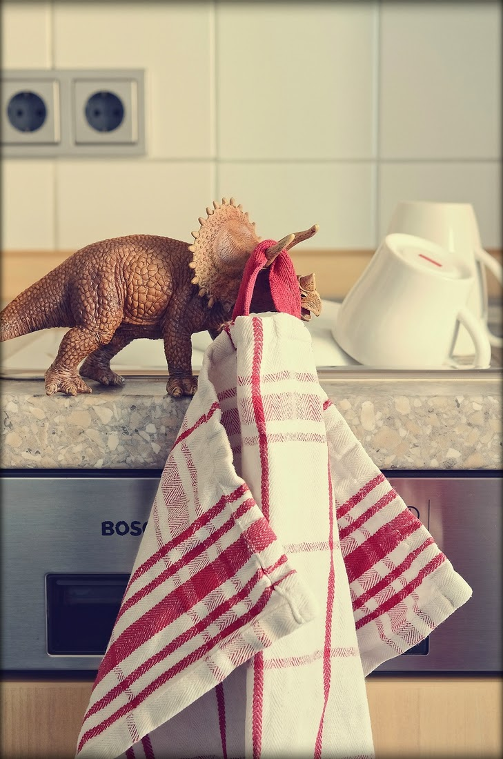 09-Dinosaur-Anchiceratops-Bettina-Güber-Unusual-Miniature-Animal-Pets-Photography-www-designstack-co