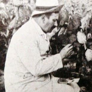 Francois Baco