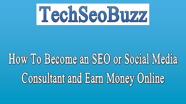 How To Become an SEO or Social Media Consultant and Earn Money Online