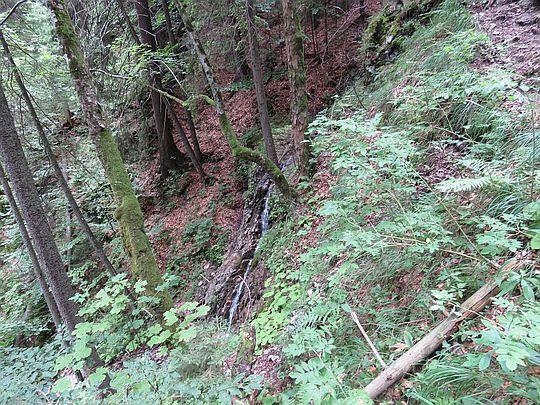 Wodospad obok szlaku.