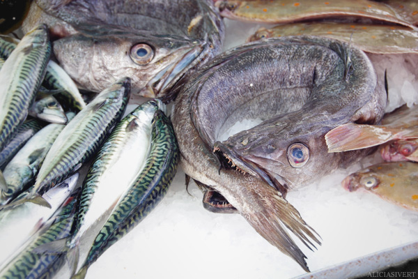 aliciasivert, alicia sivertsson, Le Nebourg, market day, marknad, marknadsdag, fish, fisk, biting its tail, ugly, angry