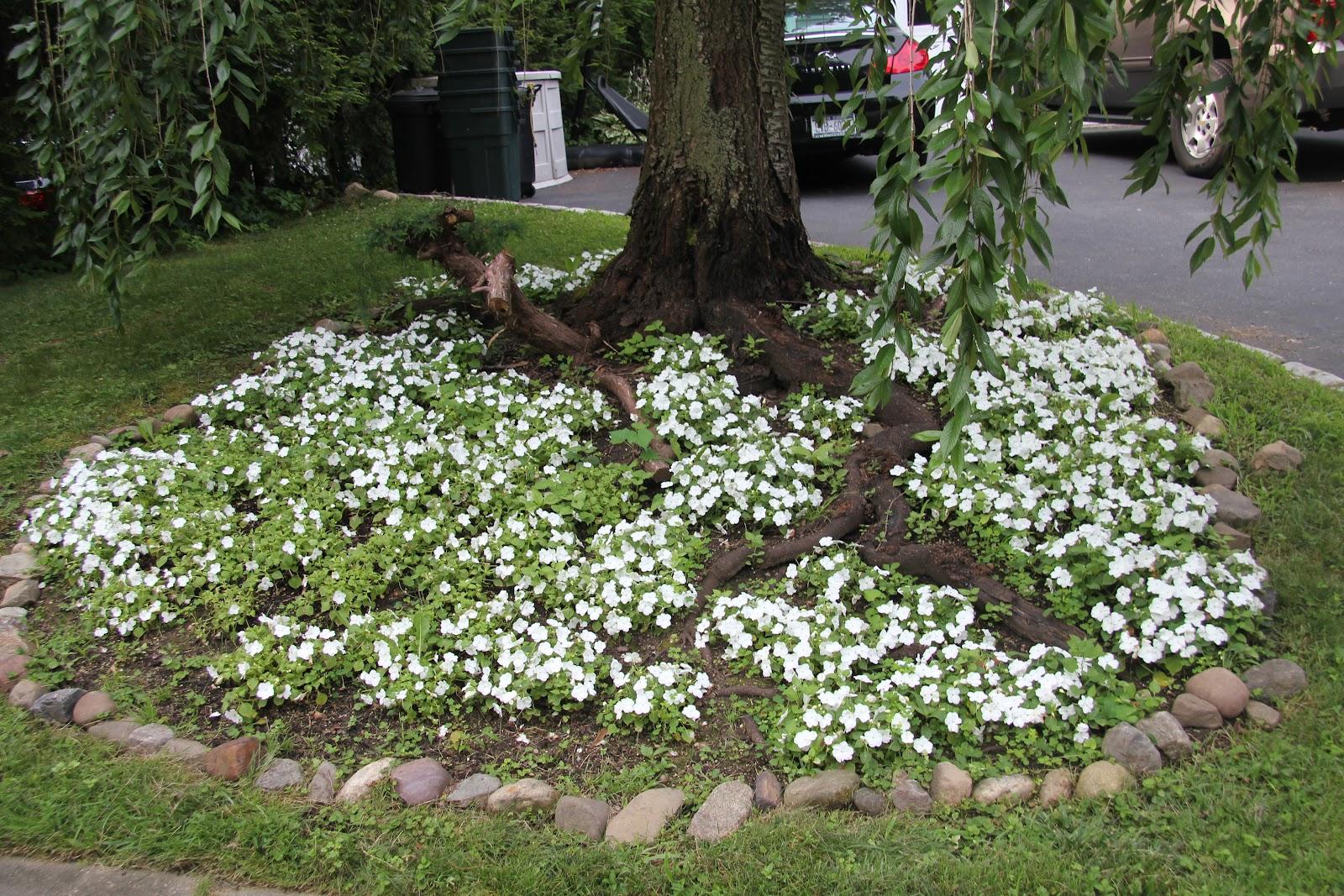 Perfect Flower Garden Ideas For Around Trees