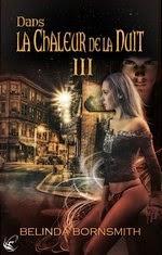 http://lachroniquedespassions.blogspot.fr/2013/12/tome-3-dans-la-chaleur-de-la-nuit-de.html#