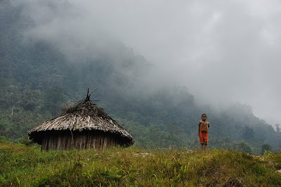Potret Rumah Adat Papua