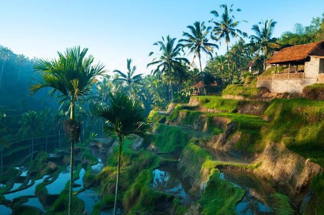 www.viajesyturismo.com.co851x564