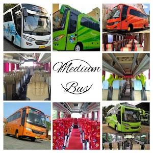 Sewa Medium Bus Jogja