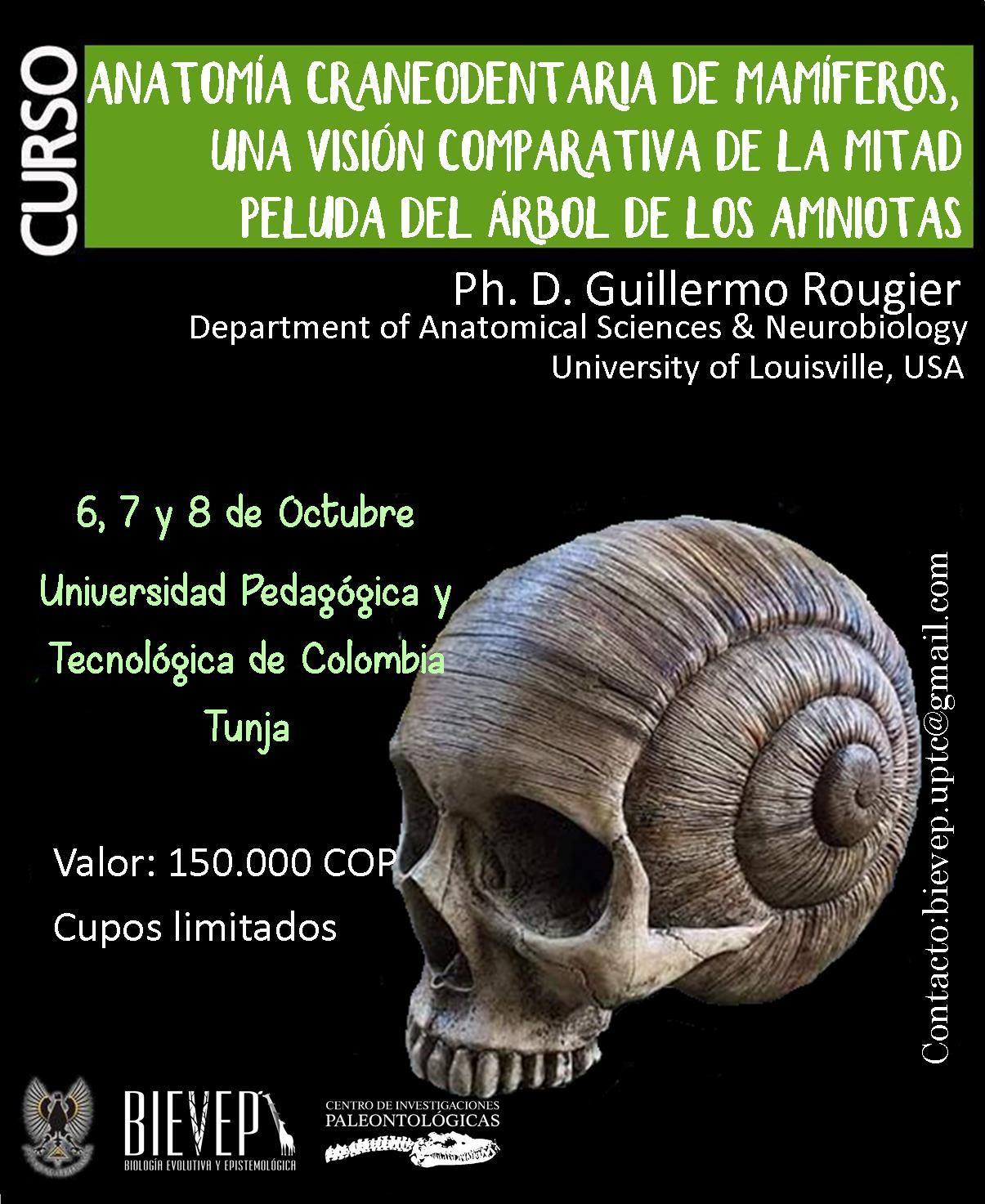 CURSO: Anatomía craneodentaria de mamíferos, una visión comparativa ...