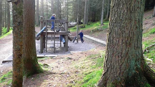 Wild Play at Whinlatter Forest in The Lake District - near to Keswick in Cumria.