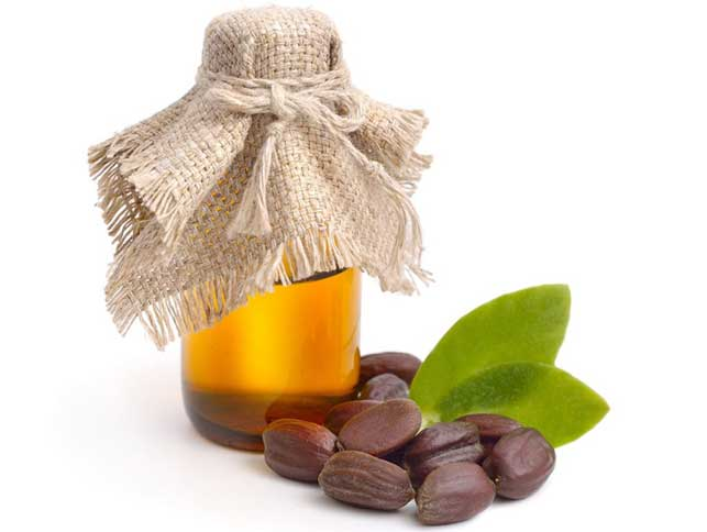Manfaat minyak jojoba