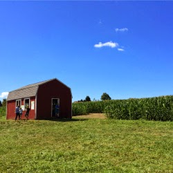 Escobar Farm RI_Wizard of Oz Corn Maze Barn_New England Fall Events