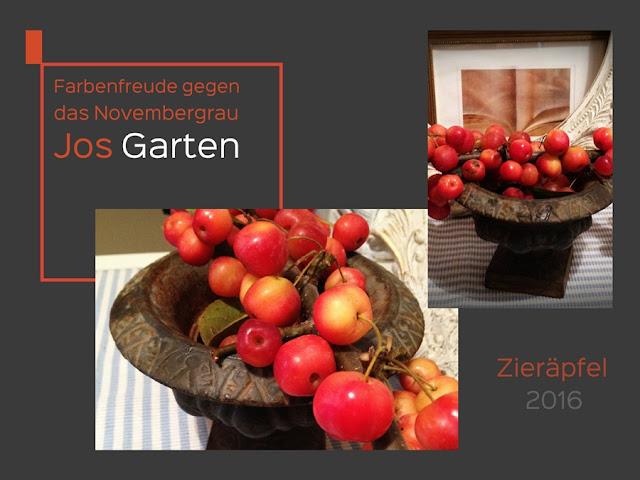 Zierapfel/Deko/Herbst