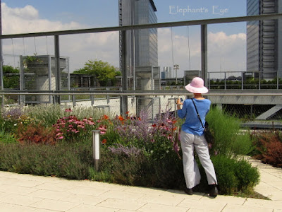 Frankfurt Skyline Plaza Garden July 2016
