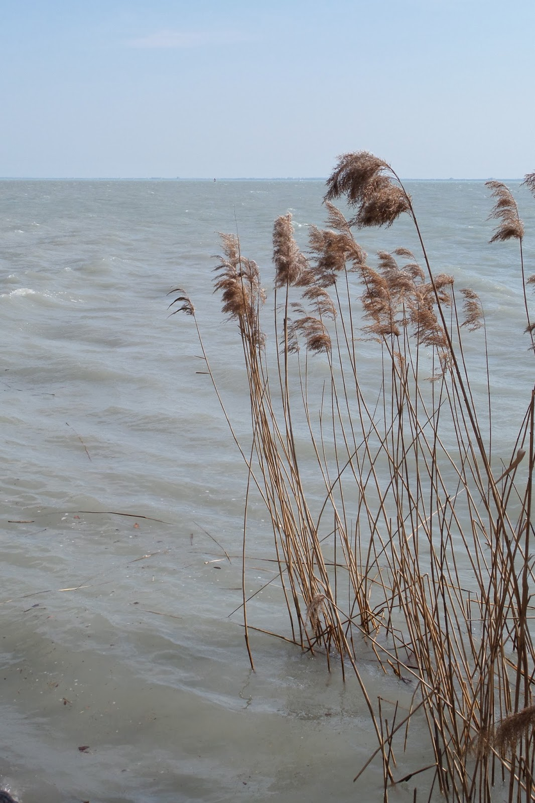 Spirituális Nagyi: Depresszió lelki okai