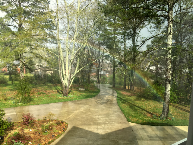 Spring rains brought this welcome sign of promise over our entrance driveway.