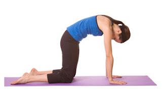 news for health 5 best yoga exercises for lower back pain