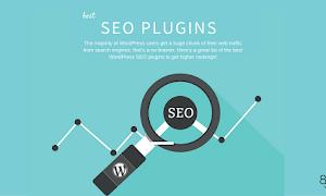 Plugin Wordpress Untuk Optimasi SEO