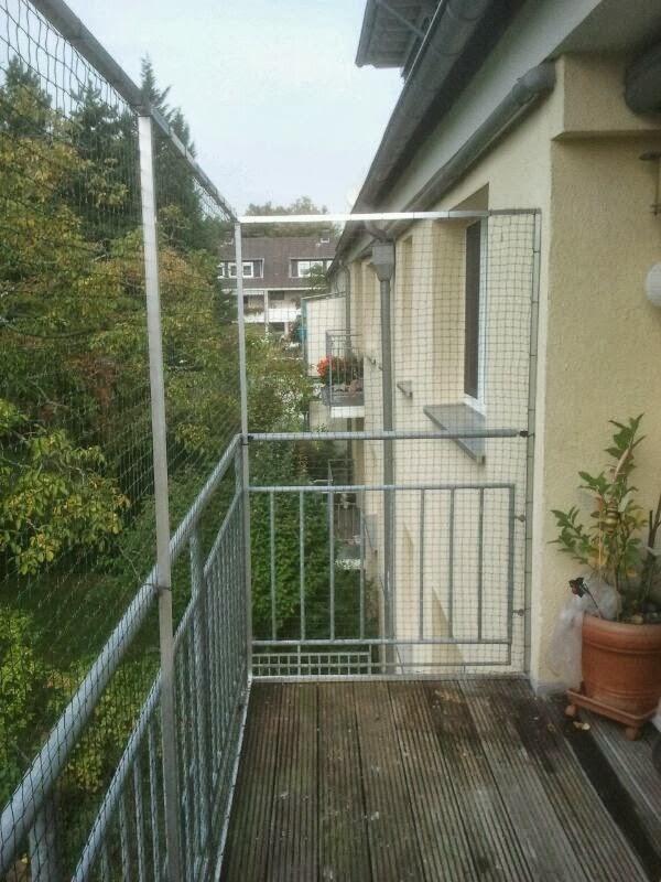 Katzenschutznetz Ohne Bohren : allegra katzennetz f r balkon oder fenster ~ Watch28wear.com Haus und Dekorationen