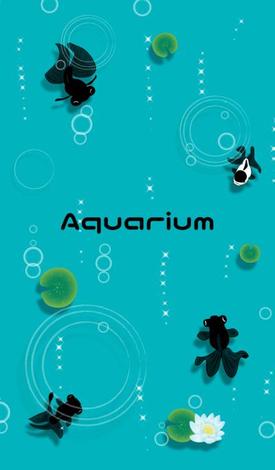 Aquarium goldfish 2
