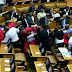 EFF and Parliament security officers FIGHT in parliament